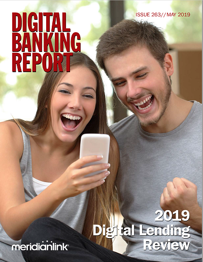 DBR 293 - 2019 Digital Lending Review